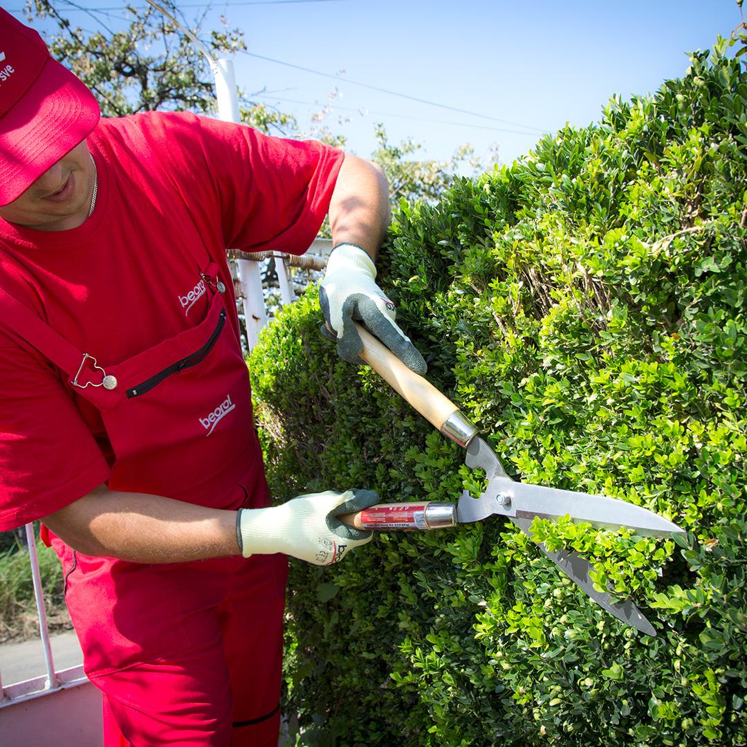 Градинари